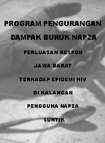Book Cover: PROGRAM PENGURANGAN DAMPAK BURUK NAPZA