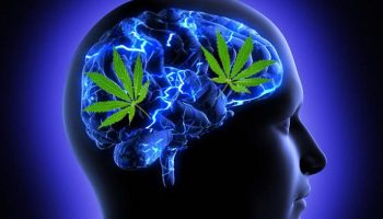 How-marijuana-benefits-mental-health-730×474