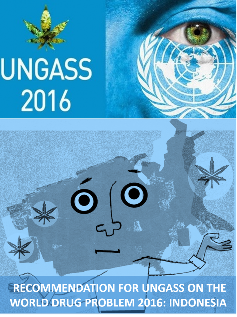 Book Cover: RECOMMENDATION FOR UNGASS ON THE WORLD DRUG PROBLEM 2016: INDONESIA