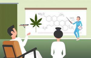 scientist-presenting-cbd-thc-cannabis-hemp-drug-molecule-doctors-team-conference-meeting-medical-marijuana-formula-presentation-concept-horizontal_48369-24739